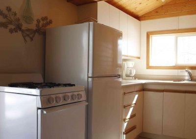 Fuzzy Crocus kitchen