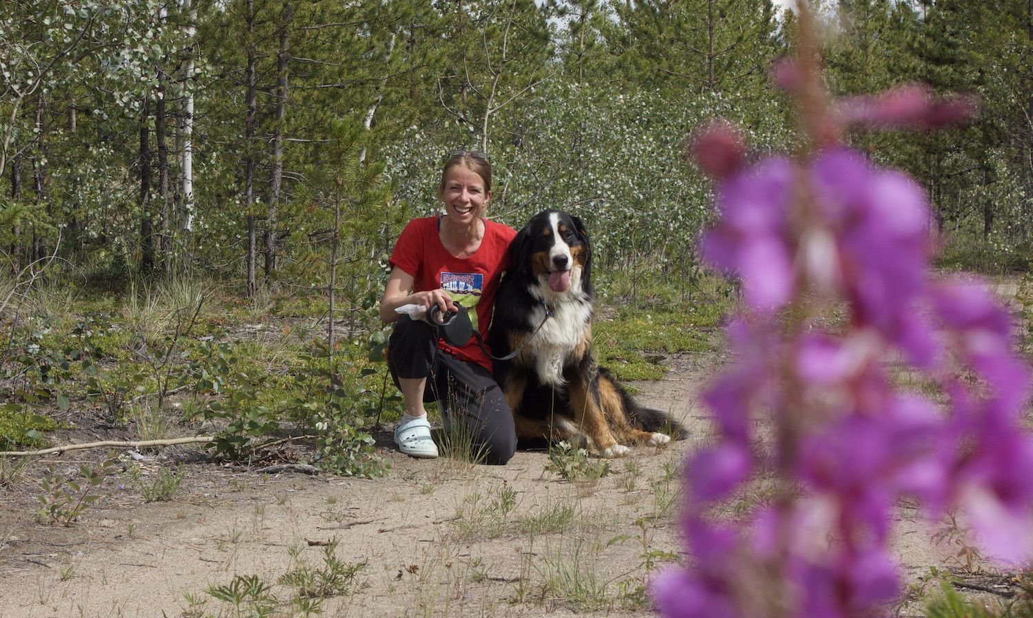 Yukon Pet Friendly Cabin Rentals